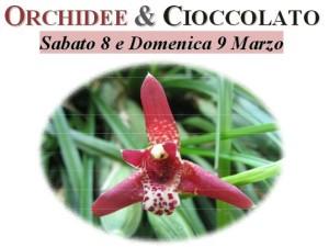 orchidee e cioccolato locandina 2014