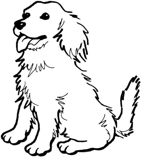Domenica 29 6a rassegna cinofila a perosa for Disegno cane per bambini