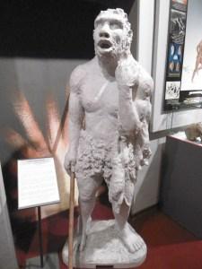 cesmap museo (6)