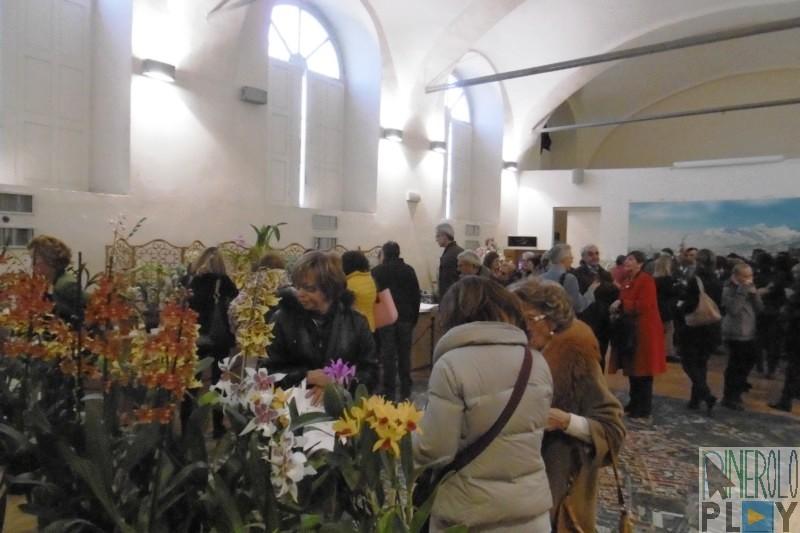 orchidee e cioccolato pinerolo 2015