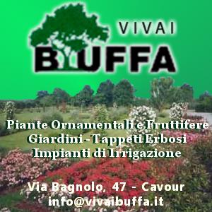 Buffa Vivaio SPOT